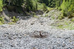 Mudflow at lake Schlierersee in the Natur park Riedingtal Zederhaus, Austria.  stock images