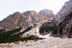 Mudflow med snöhöjdpunkt i de alpina bergen royaltyfria bilder