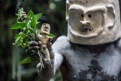 Mudmen de la Papouasie-Nouvelle-Guinée Images libres de droits