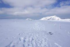 Mudoro领域在11月有雪山背景 库存照片