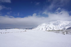 Mudoro-Feld im November mit Schneegebirgshintergrund Stockfotos