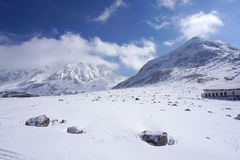 Mudoro field in November with snow mountain background Stock Image
