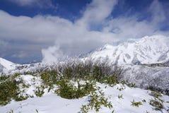Mudorogebied in November met de achtergrond van de sneeuwberg Stock Afbeelding