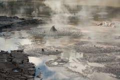 Mudpot with boiling mud in Waimangu Stock Image