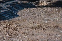 Mudpot with bubbling mud in Rotorua Royalty Free Stock Image