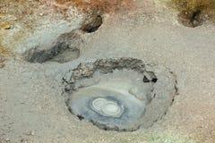 Mudpot in the Uzon Caldera. Kronotsky Nature Reserve royalty free stock image