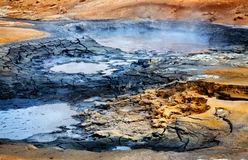 Mudpots på Hverir, Island Arkivbild