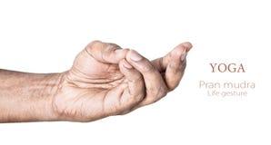 Mudra de pran de yoga Images libres de droits