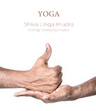 Mudra di linga di shiva di yoga Immagini Stock