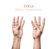 Mudra hand gesture Royalty Free Stock Images