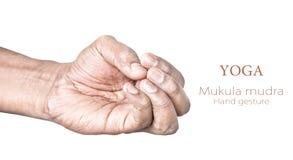 Mudra Mukula στοκ φωτογραφίες με δικαίωμα ελεύθερης χρήσης