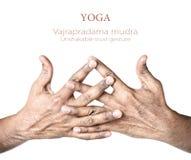 mudra vajrapradama瑜伽 免版税库存照片