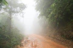 Mudroad i rainforestformen Thailand Arkivfoto