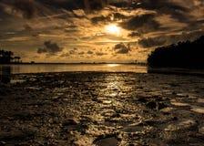 Mudscape Στοκ φωτογραφίες με δικαίωμα ελεύθερης χρήσης