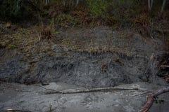 Mudslide in Vreedzaam Noordwesten Stock Foto's
