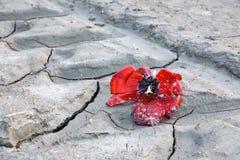 Mudsplattered petal royalty free stock photography