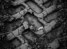 mudspår Fotografering för Bildbyråer