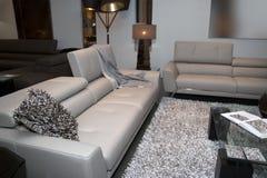 Muebles caseros modernos de la sala de estar Fotografía de archivo