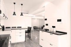 Muebles de la cocina fotografía de archivo