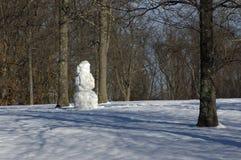 Muñeco de nieve en parque Fotografía de archivo libre de regalías