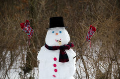 Muñeco de nieve que celebra vórtice polar Imagen de archivo libre de regalías
