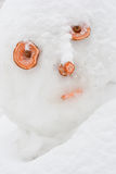 Muñeco de nieve triste Imagen de archivo libre de regalías
