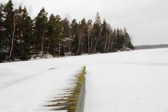 Muelle congelado Foto de archivo libre de regalías