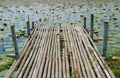 Muelle de bambú rústico en Lotus Pond en la parte central de Tailandia imagen de archivo