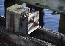 Muelle de Blyth Fotografía de archivo