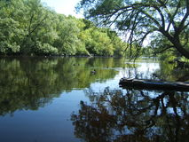 Muelle del río Fotografía de archivo