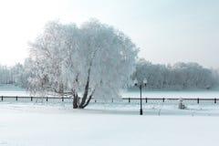 Muelle helado del invierno Fotografía de archivo libre de regalías