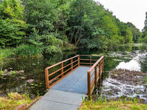 Muelle sobre un lago Fotos de archivo