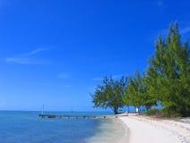 Muelle tropical Fotos de archivo