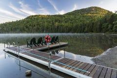 Muelle y soporte Jo del lago heart Fotos de archivo