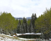 Mueller-park, Colorado stock foto