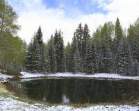 Mueller-park, Colorado Royalty-vrije Stock Fotografie