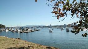 Muelles de la isla de Newcastle, Nanaimo, A.C. metrajes