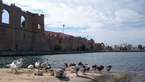 Muelles en el lago Foto de archivo