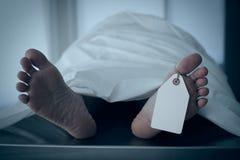 Muerte e impuestos Imagen de archivo libre de regalías