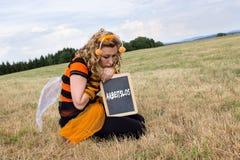 Muertes de la abeja Fotos de archivo libres de regalías