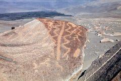 Muerto de Toro - Perú Imagen de archivo libre de regalías