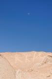 muerto Peru petroglify Toro Zdjęcie Stock