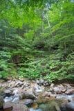 Muesca New Hampshire de Franconia Fotos de archivo