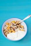 Muesli和酸奶 库存照片