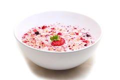 Muesli用牛奶在一个陶瓷碗服务 免版税库存照片