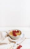 Muesli用酸奶和红色莓果 免版税库存图片