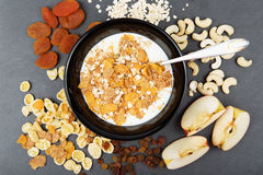 Muesli, гайки, плодоовощи, молоко и овсяная каша для завтрака Стоковое Фото