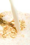 muesli молока Стоковая Фотография RF