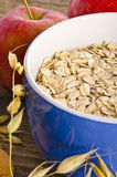 Muesli Royalty Free Stock Image