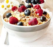 Muesli with Berries Stock Image